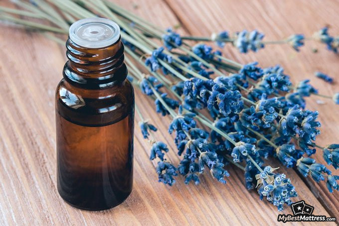 Essential oils for sleep: lavender essential oil